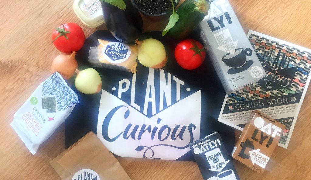 plant curious goodie bag