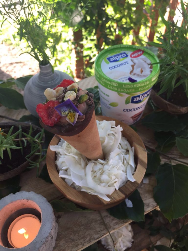 Alpro Ice Cream Oasis