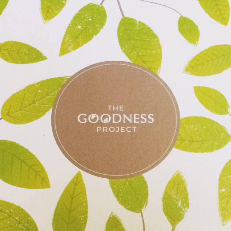goodness project vegan box review