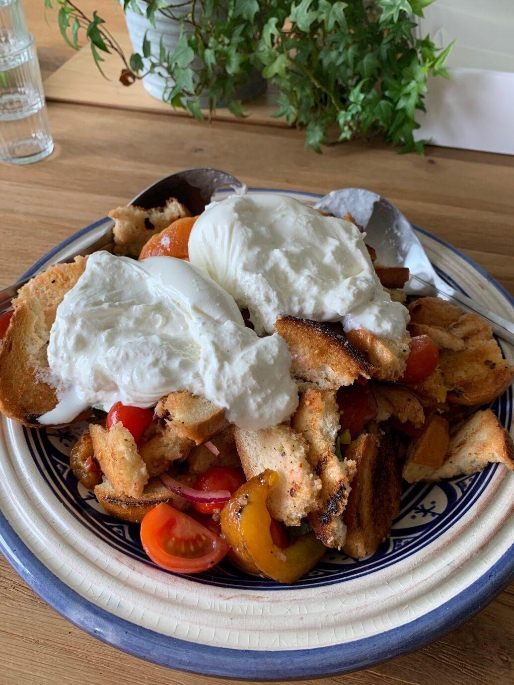 Grilled Nectarine and Burrata Panzanella Salad